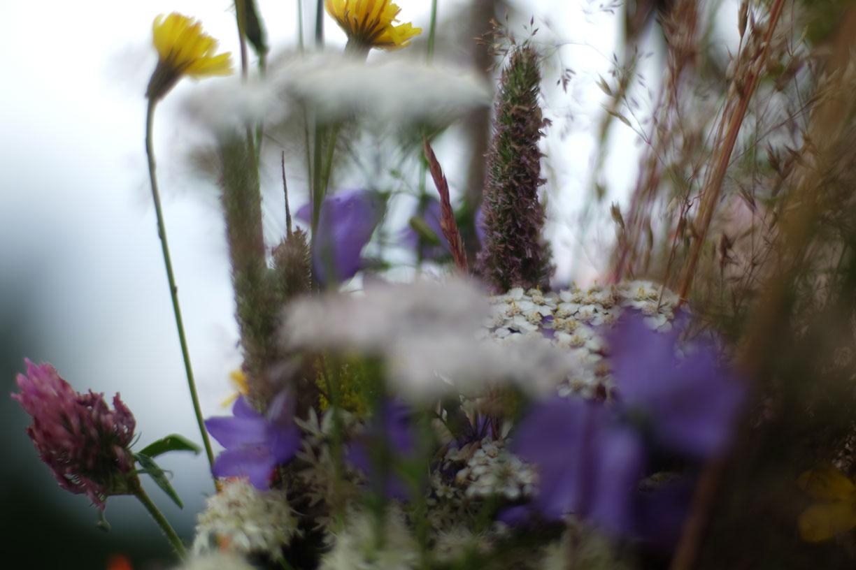 spring-4 SPRING