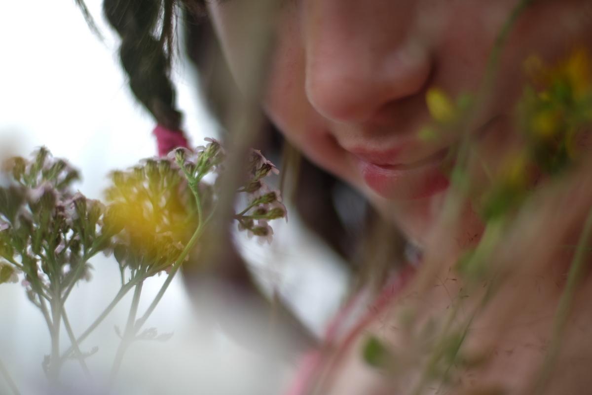 spring-7 SPRING